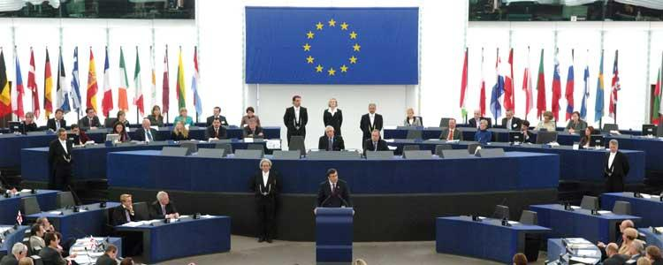 RR Advises MEP Afzal Khan on Syria Speech